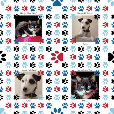 Animal Paws Gift Wrap
